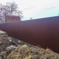 Сплошной забор из профнастила для дачи